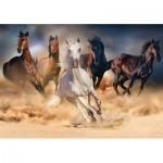 Puzzle   Wild Horses
