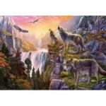 Puzzle   Wilderness