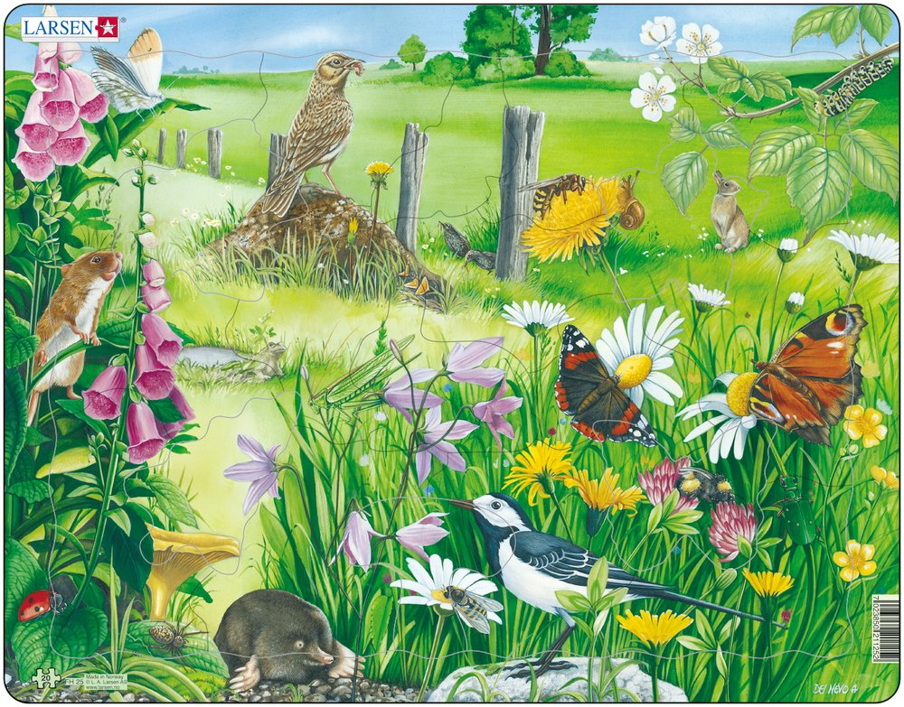 Frame Jigsaw Puzzle Nature Larsen Fh25 20 Pieces Jigsaw