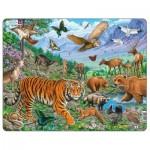 Larsen-FH39 Frame Puzzle - The Amur Tiger in Siberian Summer
