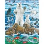 Larsen-FH42 Frame Puzzle - Polar Bear & Walrus