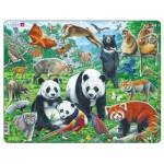 Frame Puzzle - Panda Bear Family on a China Mountain Plateau