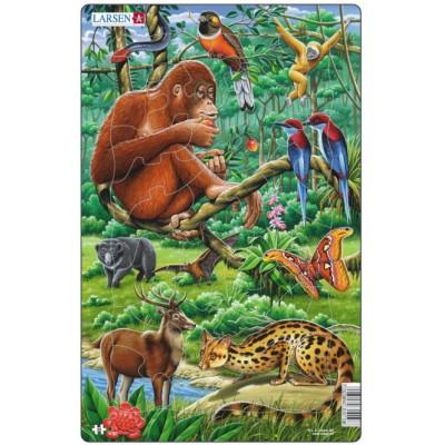 Larsen-H21-2 Frame Jigsaw Puzzle - Jungle