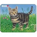 Larsen-M13-2 Frame Jigsaw Puzzle - Cat