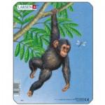 Larsen-M9-2 Frame Jigsaw Puzzle - Monkey