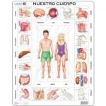 Larsen-OB1-ES Frame Puzzle  - Nuestro Cuerpo (in Spanish)