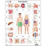 Larsen-OB1-GB Frame Puzzle - The Body