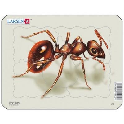 Puzzle Larsen-Z2-3
