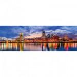 Puzzle  Master-Pieces-71851 City Panoramics - Nashville