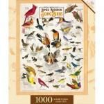 Puzzle  Master-Pieces-72049 Songbirds