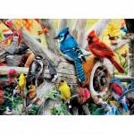 Puzzle   Backyard Birds