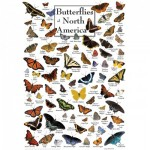 Puzzle   Butterflies of North America