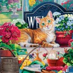 Puzzle   Cat-ology - Blossom