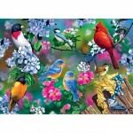 Puzzle   Songbird Collage