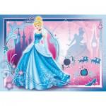 Puzzle  Nathan-86709 Cendrillon: A life of Princess