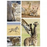 Puzzle  Nathan-87150 Wild Animals Babies