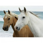 Nathan-87187 Jigsaw Puzzle - 500 Pieces - Horses on the Beach