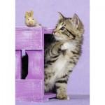 Puzzle  Nathan-87455 Kitten