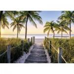 Puzzle  Nathan-87547 Florida beach