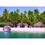 Puzzle  Nathan-87591 Laquedives Islands