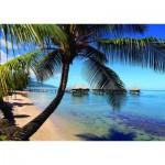 Puzzle  Nathan-87763 Dream of Polynesia