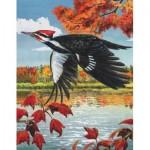 Puzzle  New-York-Puzzle-CB1858 Pileated Woodpecker Mini