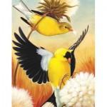 Puzzle   American Goldfinch Mini