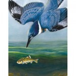 Puzzle   Belted Kingfisher Mini