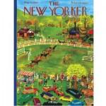 Puzzle   Horse Show