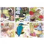 Puzzle  Otter-House-Puzzle-75079 RSPB - Garden Birds