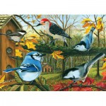 Puzzle  Cobble-Hill-51661-80053 Blue Jay and Friends