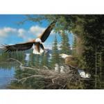 Puzzle  Cobble-Hill-51737 Michael Sieve : Nesting Eagles