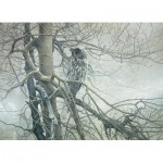 Puzzle  Cobble-Hill-51769 Robert Bateman : Ghost of the North