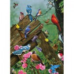 Puzzle  Cobble-Hill-51781 Birds of the Forest