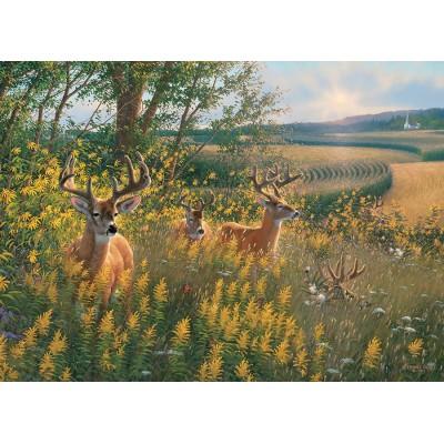 Puzzle Cobble-Hill-51789-80092 Summer Deer