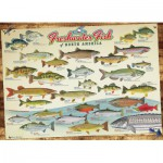 Puzzle  Cobble-Hill-51793-80094 Freshwater Fish of North America