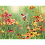 Puzzle  Cobble-Hill-52078 XXL Jigsaw Pieces - Susan Bourdet : Rafous Hummingbird