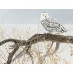 Puzzle  Cobble-Hill-52084 XXL Jigsaw Pieces - Fallen Willow Snowy Owl