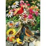 Puzzle  Cobble-Hill-52101 XXL Jigsaw Pieces - Greg Giordano - Garden Birds