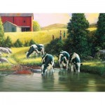 Puzzle  Cobble-Hill-52103 XXL Jigsaw Pieces - Douglas Laird - Holsteins