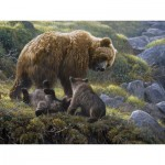 Puzzle  Cobble-Hill-54584 Robert Bateman : Grizzly and Cubs