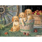 Puzzle  Cobble-Hill-54590 XXL Jigsaw Pieces - Terry Doughty - Puppy Pail