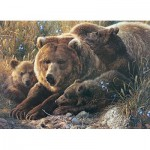 Puzzle  Cobble-Hill-54624 XXL Pieces - Grizzly Family