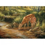 Puzzle  Cobble-Hill-54626 XXL Pieces - Deer Family