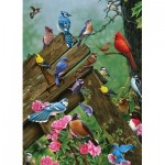 Puzzle  Cobble-Hill-57190 Birds of the Forest