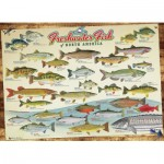 Puzzle  Cobble-Hill-57193 Freshwater Fish of North America