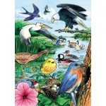 Cobble-Hill-58809 Frame Puzzle - North American Birds