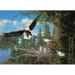 Puzzle  Cobble-Hill-80070 Michael Sieve : Nesting Eagles