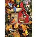 Puzzle  Cobble-Hill-80100 Fall Birds