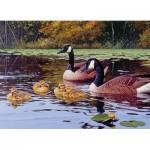 Puzzle  Cobble-Hill-80185 Platts Pond